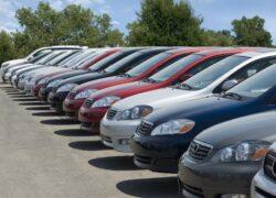 Duplicado Carnet de Conducir 100% Online - Sin cita previa 1