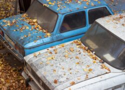 DGT baja automática coche